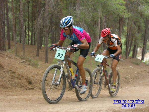 אליפות ישראל 2005